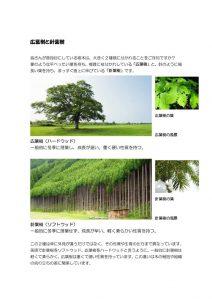 広葉樹と針葉樹のサムネイル